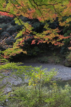 七里川渓谷